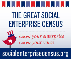 socialenterprisecensus